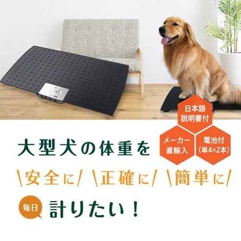 【大型犬もラクラク計れちゃう😍体重計の紹介です🐶】