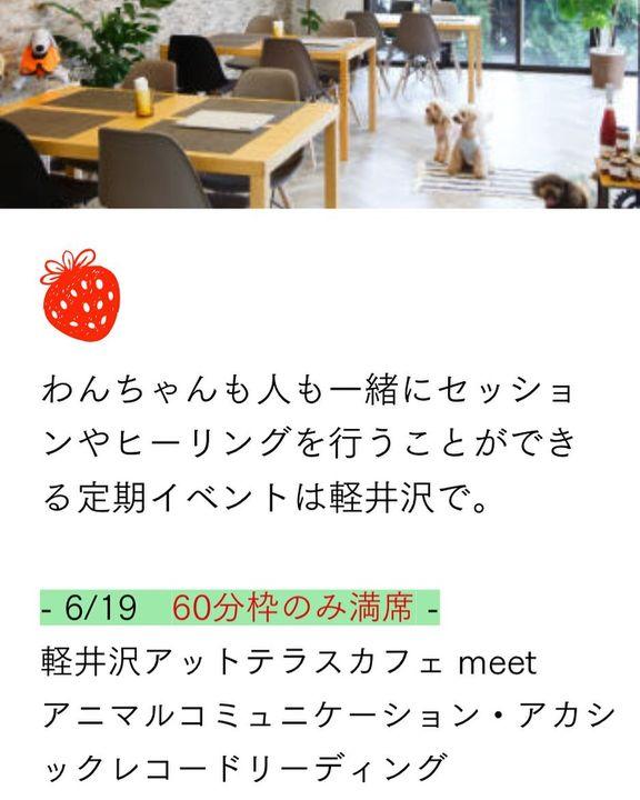 【6/19アニマルコミュニケーション、アカシックリーディング、残り1枠です!】
