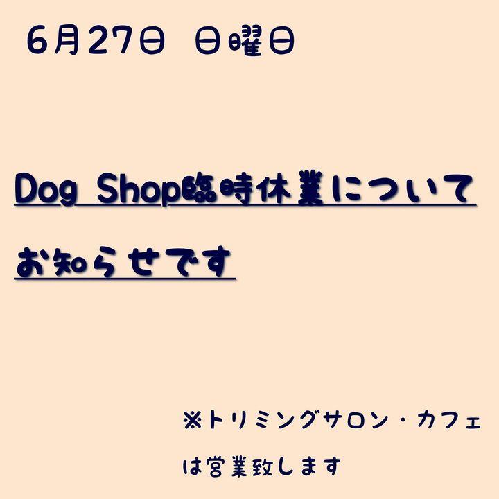 【6月27日 日曜日 DogShop臨時休業について】