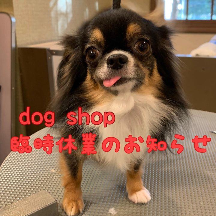 【10月9日(土曜日)dog shop臨時休業についてお知らせ🙇♀️】
